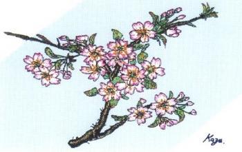 183 CG 桜.jpg