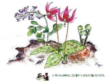 194 CG 片栗の花.jpg