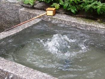 541-2 菓生の泉.JPG