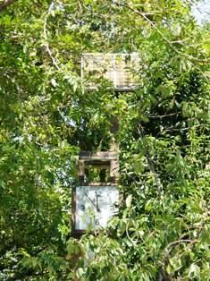 541-3 木立の中のソーラーP付き時計.JPG