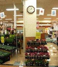 549-3 SCの花売り場の時計.JPG