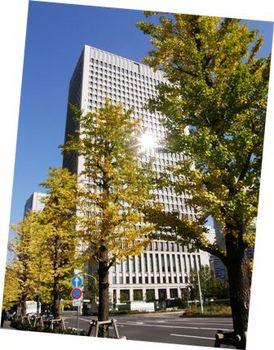 557-5 ワークフェアー2011-6 ビルの谷間の秋.JPG