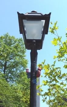 672-3 街路灯とカブトムシ.JPG