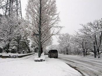 476-0 セミナー 雪.JPG
