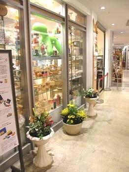 531-0 廊下の花.JPG