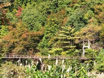 632-5 秋05-吊り橋と山.JPG