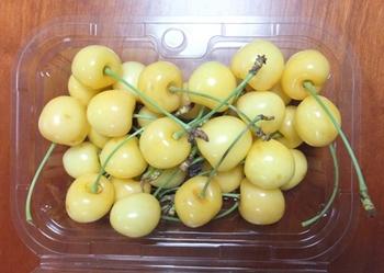 黄色いサクランボ.JPG